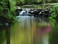 SA933 Reflections Clyne Gardens