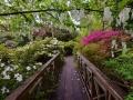 SA928 Bridge of Sighs Clyne Gardens