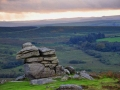 ED12 Saddle Tor