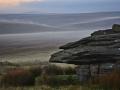 ED39 Dawn Mist