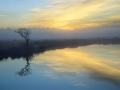 GCB11 Autumn Mist Broad Pool
