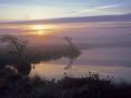 GCB08 Autumn Dawn Broad Pool