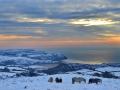 GCC20 Arctic Dawn Cefn Bryn