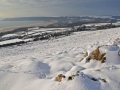 GCC21 Winter Cefn Bryn