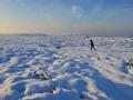 GCC22 Winter Walk Cefn Bryn