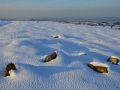 GCC25 Winter Cefn Bryn