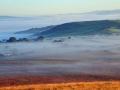 GCC47 Morning Mist North Gower