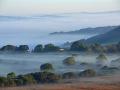 GCC49 Morning Mist North Gower