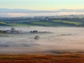 GCC50 Morning Mist North Gower