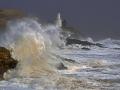 SC40 Angry Sea Mumbles Head
