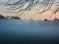 SC979 Morning Mist Mumbles