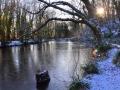 SB28 Frozen Pond Clyne Valley