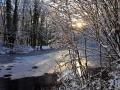 SB23 Frozen Pond Clyne Valley