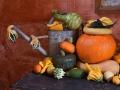 WSVG83 Pumpkins Dyffryn GardensS
