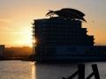 WSCF21 St Davids Hotel Cardiff Bay