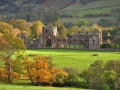WSM12 Autumn Llanthony Priory