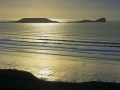 GB17 Golden Worm Rhossili