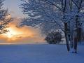 SB01 Sunrise Blackpill