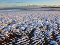 SB14 Ripples Swansea Bay